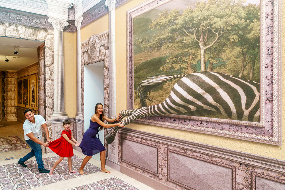 3d museum of wonders zebra